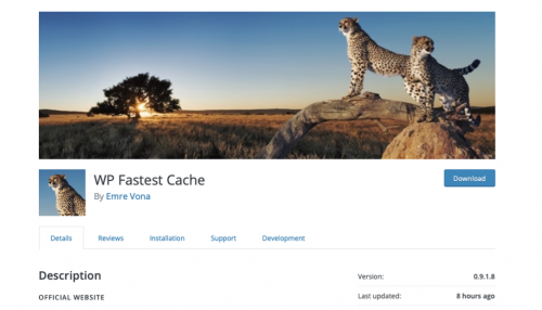 website cache plugin
